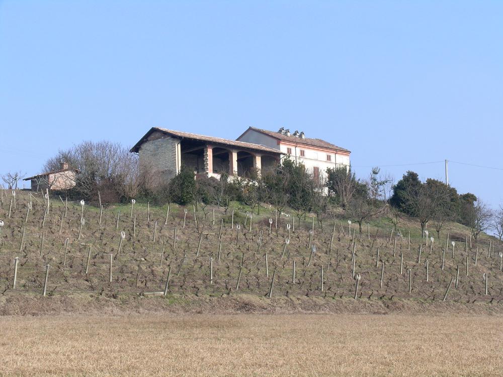 Tenuta Palazzo
