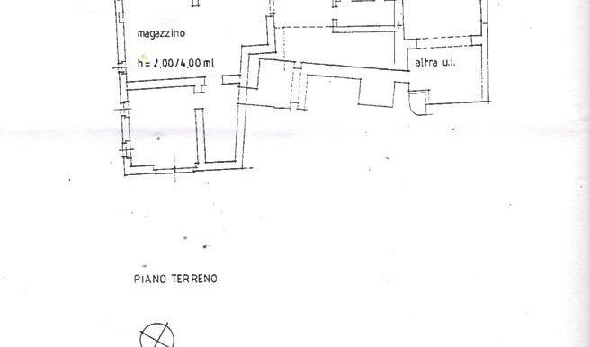 Piantina 4