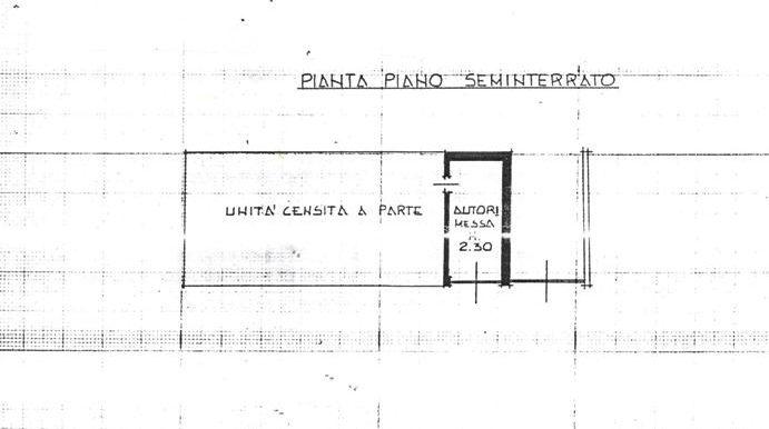 Piantina 2