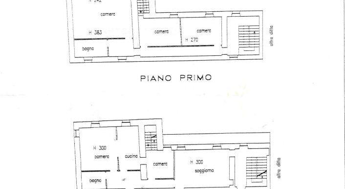 Piantina 3